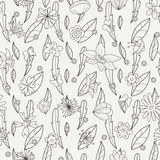 Doodle seamless pattern with various doodle flowers, leaves and branches. Royalty Free Stock Photos