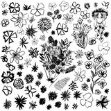 Doodle set different flowers in sketch.  Royalty Free Stock Photos