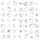 Doodle set of different fruits. Monochrome Doodle set of different fruits isolated on white background royalty free illustration