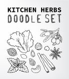 Doodle set. Kitchen herbs Fruit doodle set. Set of elements suitable for your restaurant business. Set of elements 15 Stock Photography
