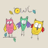 Doodle set owl vector royalty free illustration