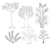 Doodle set of plants Royalty Free Stock Images