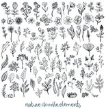 Doodle Sketch nature collection of elements Stock Photos