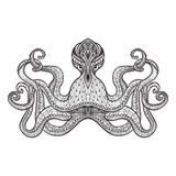 Doodle sketch octopus black line Royalty Free Stock Photography