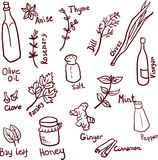 Doodle spice set Stock Photography