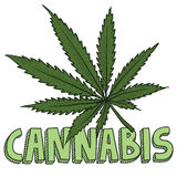 Cannabis marijuana sketch Royalty Free Stock Photo