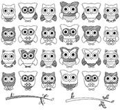 Doodle Style Vector Set of Cute Owls Royalty Free Stock Image