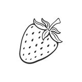 Doodle of sweet strawberry. Vector illustration. Hand drawn doodle of sweet strawberry. Healthy food. Cartoon sketch. Decoration for greeting cards, posters stock illustration