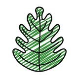 Doodle tropical leaf botany nature style. Vector illustration vector illustration