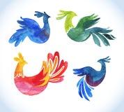 Doodle vector watercolor bird set.Cute Royalty Free Stock Photography