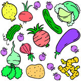 Doodle of vegetable various colorful set Stock Images