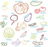 Doodle vegetables set Royalty Free Stock Images