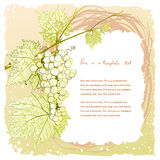 Doodle vintage frame with grape cluster Stock Images
