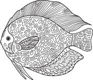 Doodle zentangle fish. Coloring page with animal for adults.
