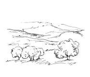 Doodles благоустраивают с полями и деревьями Стоковая Фотография RF