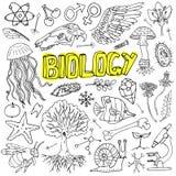 Doodles науки биологии вектора Для украшения школьного образования и документа Стоковое фото RF