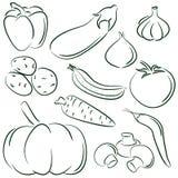 doodles овощ бесплатная иллюстрация