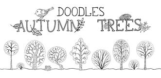 Vector set of autumn trees on white background. Stock Photography