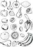 Doodles dell'insieme della frutta Fotografia Stock