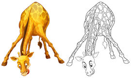 Doodles drafting animal for giraffe Royalty Free Stock Photography