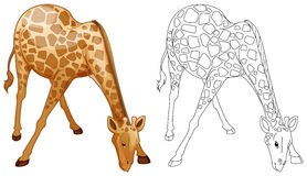 Doodles drafting animal for wild giraffe Stock Images