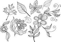 Doodles florales Imágenes de archivo libres de regalías