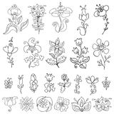 Doodles hand drawn stylized flowers,buds set.Linear silhouette Royalty Free Stock Image