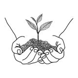 Doodles of hands holding seedling design Stock Images