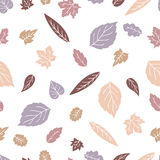 Doodles pattern. Leaves chaotic pattern. Doodles pattern of several kinds of leaves. Contains birch leaves, oak, maple and others. of several kinds of leaves Stock Image