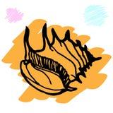 Doodles seashells на белой предпосылке Стоковое Фото