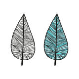 Doodling hand drawn amazing feathers with patterns. Contour and colorful, vector illustration Royalty Free Stock Images