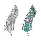 Doodling hand drawn amazing feathers with patterns Royalty Free Stock Photo