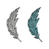 Doodling hand drawn amazing feathers with patterns. Contour and colorful, vector illustration Royalty Free Stock Photo