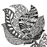 Doodling hand drawn amazing feathers with patterns Stock Photos