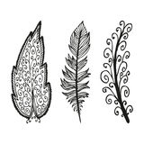 Doodling hand drawn amazing feathers with patterns. Vector illustration Royalty Free Stock Photography