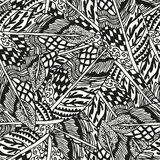Doodling hand drawn seamless background with. Feathers and patterns, vector illustration Royalty Free Stock Photo