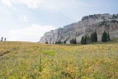 Doodscanion in het Nationale Park van Grand Teton Royalty-vrije Stock Foto's