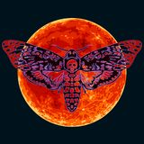 Doodshoofd hawkmoth op de volledige rode Maanachtergrond De vlinder van de schedelmot Vector stock illustratie