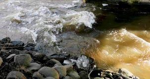 Dooi en de motie van de rivier dichtbij de steenachtige kust stock video