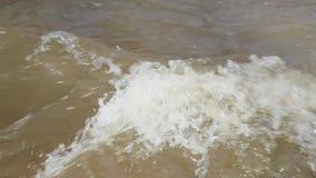 Dooi en rivierbeweging in de lente langzame geanimeerde video stock footage