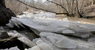 Dooi en rivierbeweging door brede bladeren van ijs stock video