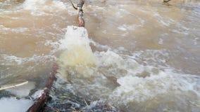 Dooi en rivierbeweging door gevallen takken van bomen langzame geanimeerde video stock videobeelden