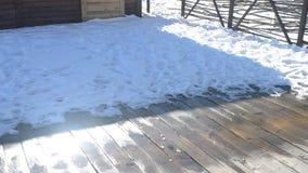 dooi Water van smeltende sneeuw die van dak op houten raad druipen stock video