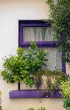 Doolin. Nice purple wooden window with plant pots at Doolin, county Kerry, Ireland royalty free stock photos