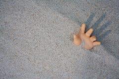 Dooll ręka w ruiny przyjemności pomocy Zdjęcia Royalty Free