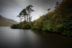 Doolough Trees Royalty Free Stock Photography