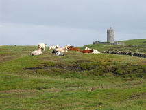 Doonagore Castle. Near the Doolin, Ireland royalty free stock image