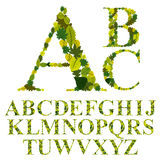 Doopvont met bladeren, bloemen geplaatste alfabetbrieven wordt gemaakt, vector die desig Stock Foto