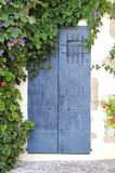 Door. Picture of door covered by leaves royalty free stock images