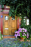 Door. To home in summer royalty free stock images